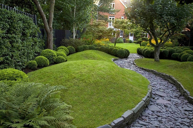 Английский газон у дома