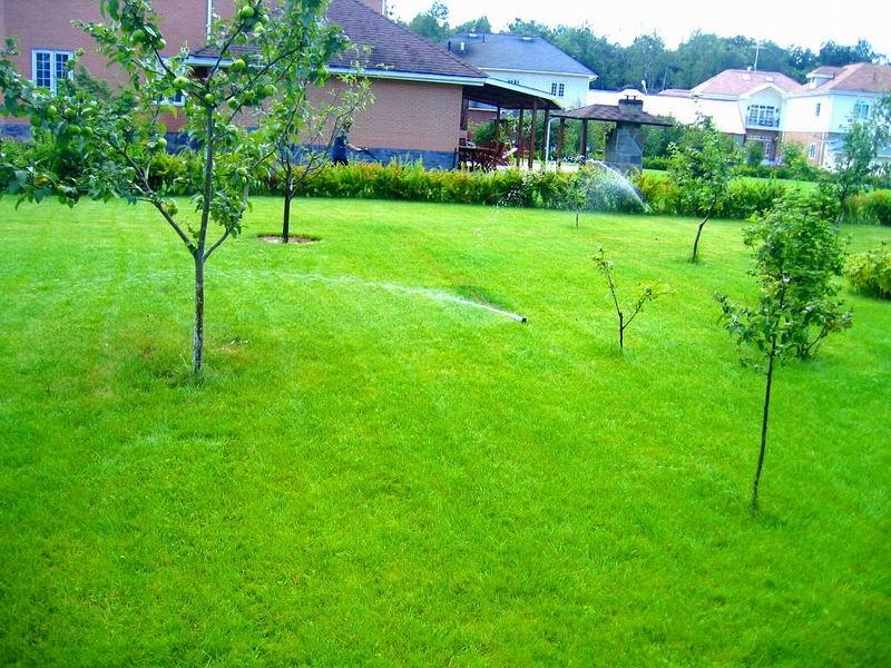 Полив газона у дома.