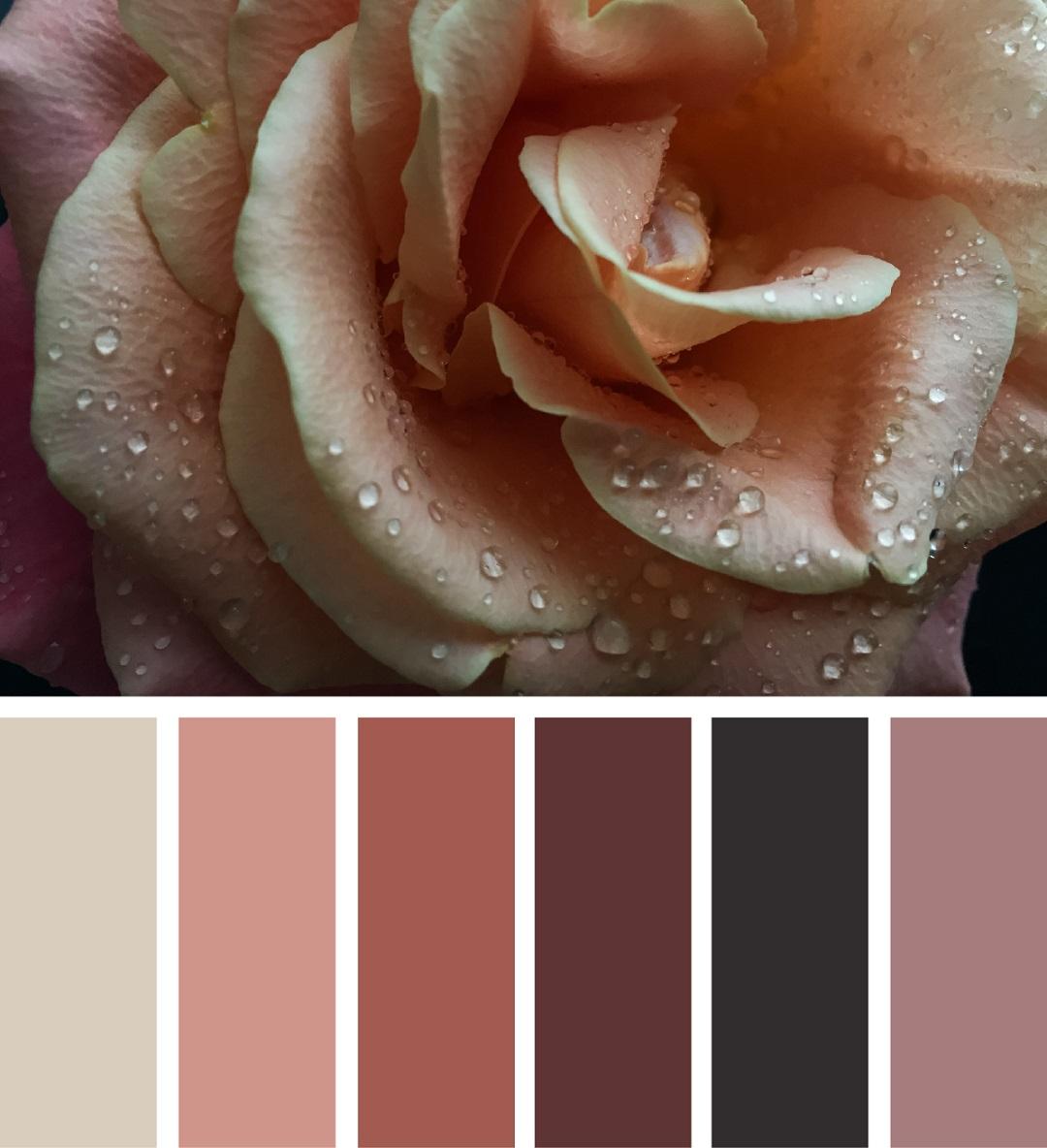 Выбор базового цвета, палитры